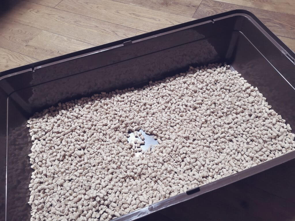 ヒノキア消臭砂を敷き詰めた