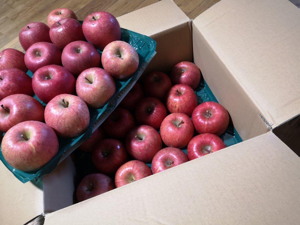 ふるさと納税の返礼品で貰ったりんご